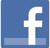 facebook-mini